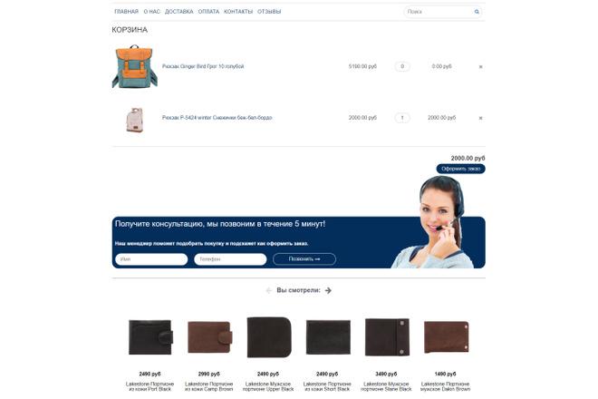 Профессионально создам интернет-магазин на insales + 20 дней бесплатно 55 - kwork.ru
