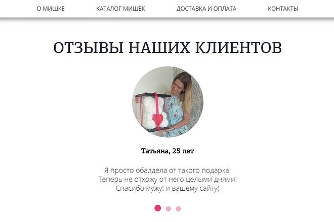 Сделаю копию Landing Page c настройкой 1 - kwork.ru