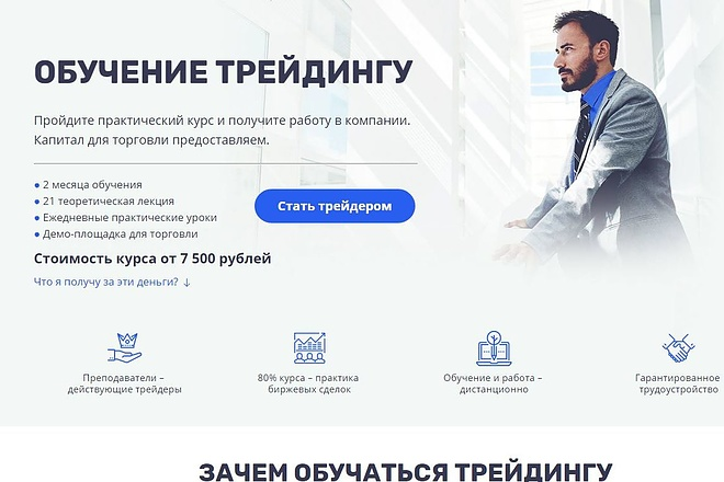 Скопировать Landing page, одностраничный сайт, посадочную страницу 77 - kwork.ru