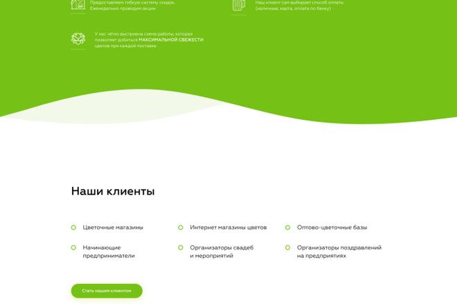 Создание Landing Page, одностраничный сайт под ключ на Tilda 13 - kwork.ru