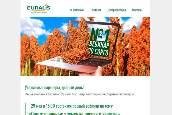 Создание и вёрстка HTML письма для рассылки 54 - kwork.ru