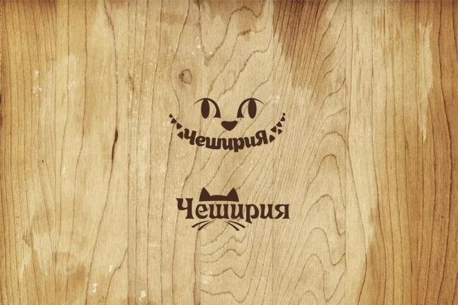 Три уникальных варианта логотипа 21 - kwork.ru