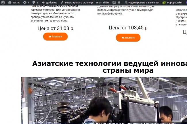 Создам интернет-магазин на Wordpress 27 - kwork.ru