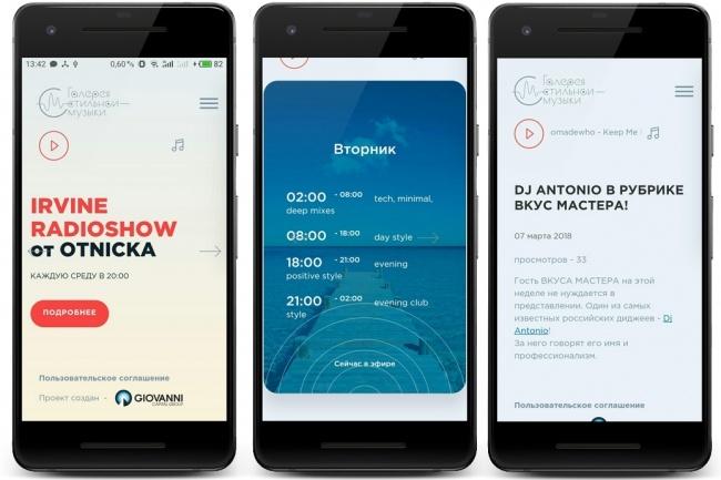 Конвертирую сайт в мобильное приложение 4 - kwork.ru