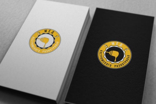 Нарисую удивительно красивые логотипы 24 - kwork.ru