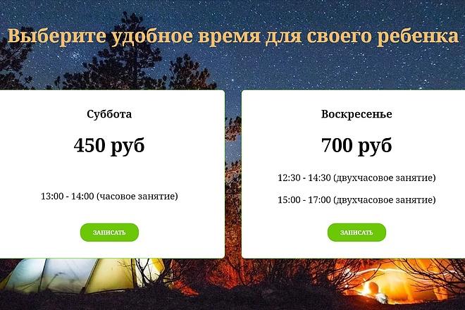 Создание сайта - Landing Page на Тильде 48 - kwork.ru