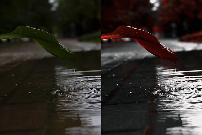 Занимаюсь обработкой в фотошопе - ретушь, замена фона, цветокор 4 - kwork.ru