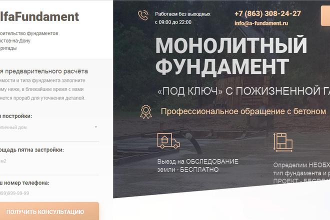 Качественная копия лендинга с установкой панели редактора 56 - kwork.ru