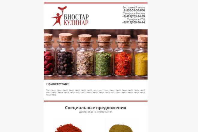 Разработаю шаблон письма для email рассылки 20 - kwork.ru