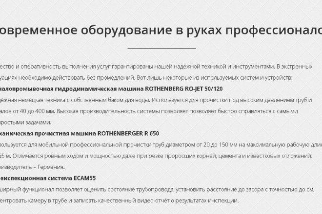 Копирование Landing Page и перенос на Wordpress 16 - kwork.ru