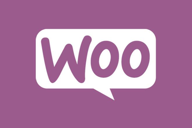 50 премиум тем WP для интернет-магазина на WooCommerce 11 - kwork.ru