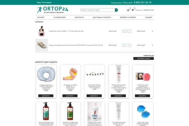 Профессионально создам интернет-магазин на insales + 20 дней бесплатно 7 - kwork.ru