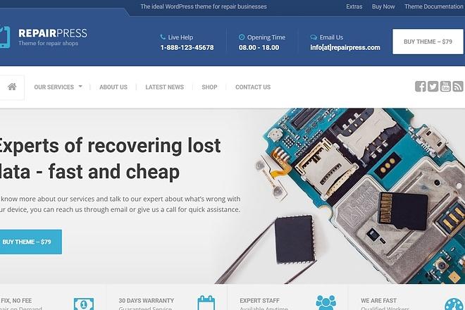 Тема RepairPress с плагинами для WordPress на русском с обновлениями 18 - kwork.ru