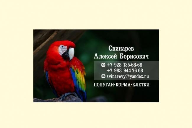 Визитка 90 х 50 мм 15 - kwork.ru