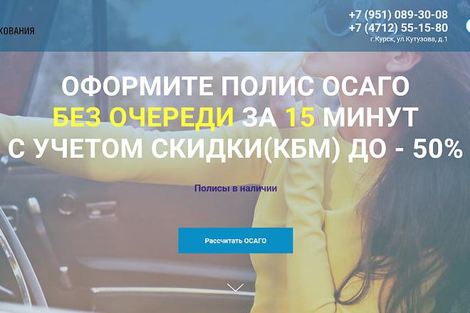 Копирование лендингов, страниц сайта, отдельных блоков 15 - kwork.ru
