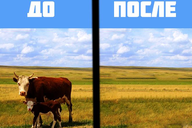 Уберу задний фон и обработаю фотографию 1 - kwork.ru