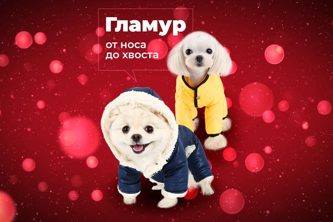 Дизайн баннера 20 - kwork.ru