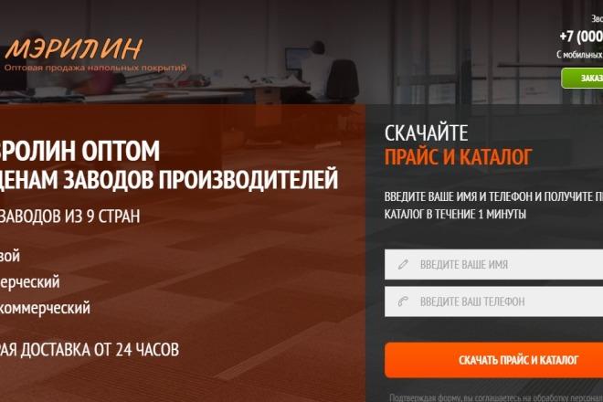 Делаю копии landing page 33 - kwork.ru