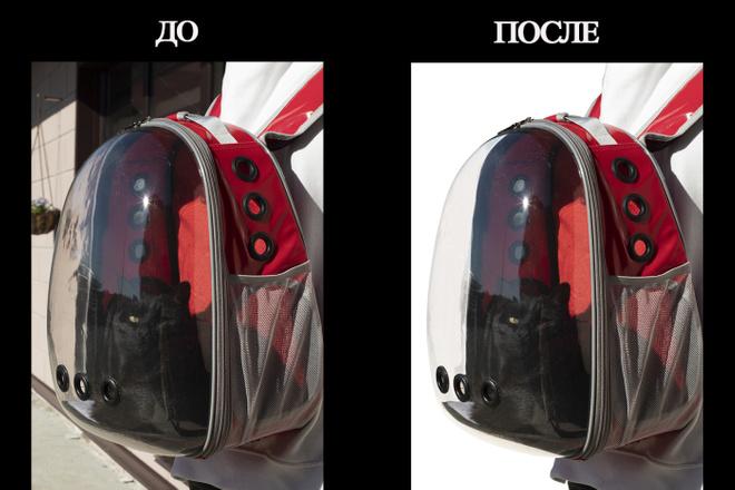 Обтравка изображений. Сменю,вырежу фон на белый или любой предложенный 2 - kwork.ru