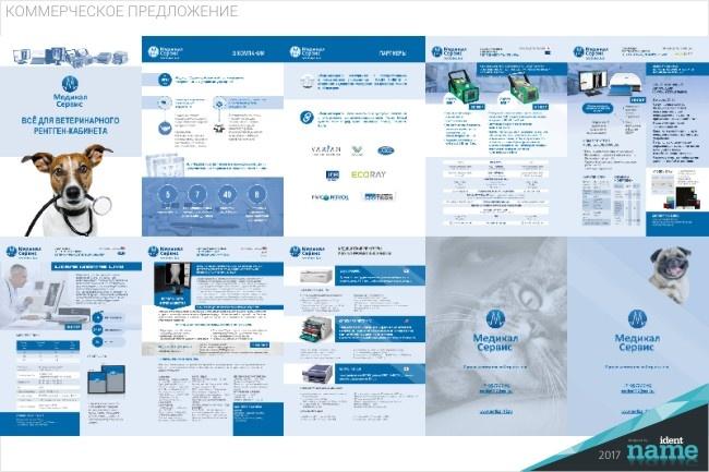 Разработаю маркетинг-кит компании - продающую презентацию 13 - kwork.ru