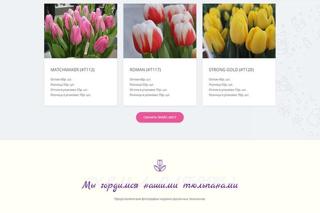 Сделаю продающий Лендинг для Вашего бизнеса 70 - kwork.ru