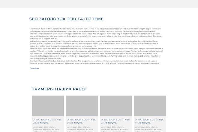 Уникальный дизайн сайта для вас. Интернет магазины и другие сайты 96 - kwork.ru