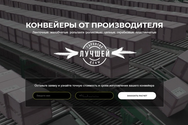 Продающий сайт - Лендинг под ключ, для любых целей 65 - kwork.ru