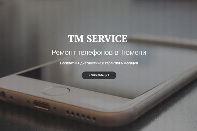 Продающий сайт - Лендинг под ключ, для любых целей 95 - kwork.ru