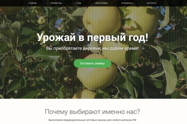 Продающий сайт - Лендинг под ключ, для любых целей 100 - kwork.ru