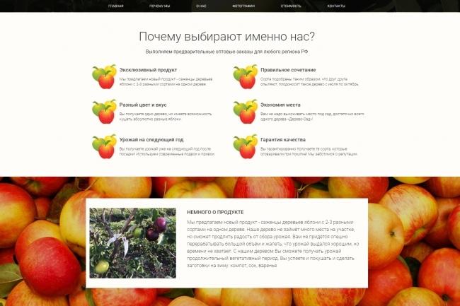 Продающий сайт - Лендинг под ключ, для любых целей 98 - kwork.ru