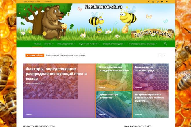Создам автонаполняемый сайт на WordPress, Pro-шаблон в подарок 12 - kwork.ru