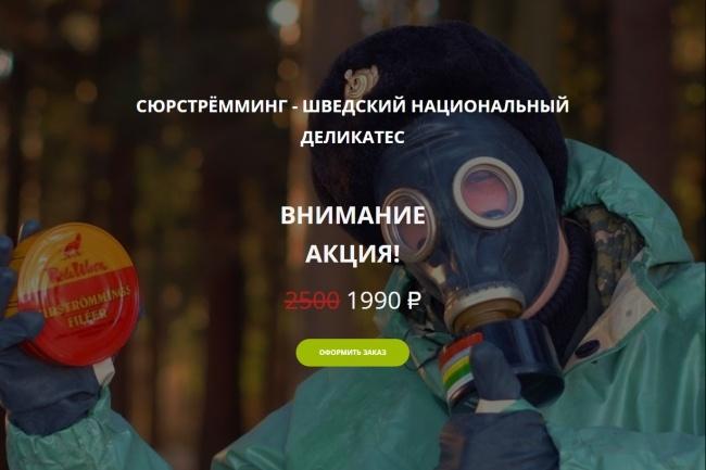 Копирование Landing Page 53 - kwork.ru