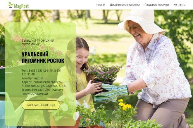 Копия сайта, landing page + админка и настройка форм на почту 91 - kwork.ru