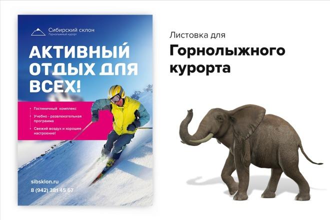 Сделаю продающую листовку с большой конверсией 3 - kwork.ru