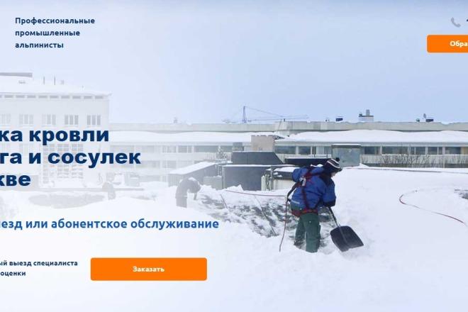 Делаю копии landing page 41 - kwork.ru