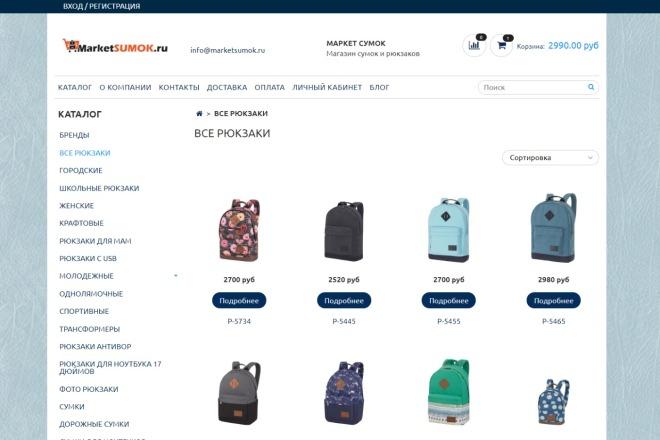 Профессионально создам интернет-магазин на insales + 20 дней бесплатно 17 - kwork.ru