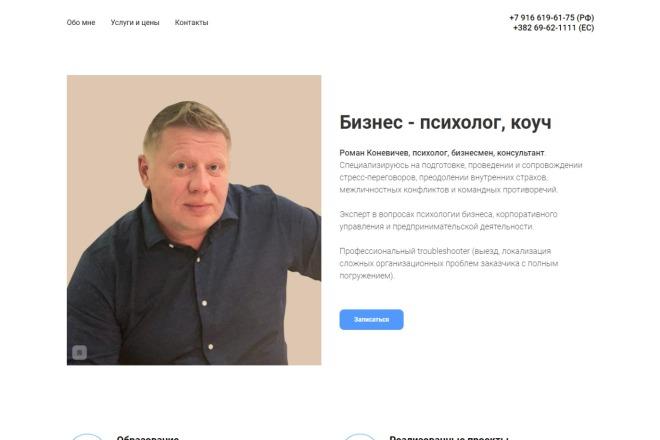 Копия сайта, landing page + админка и настройка форм на почту 92 - kwork.ru