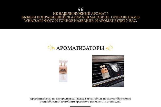 Создам продающий Landing Page под ключ 12 - kwork.ru