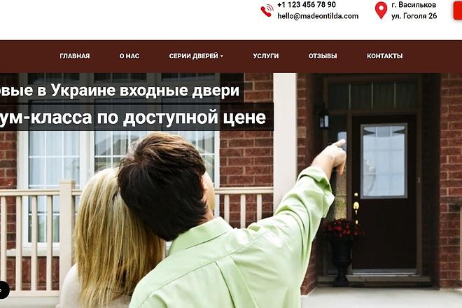 Создание сайта - Landing Page на Тильде 79 - kwork.ru
