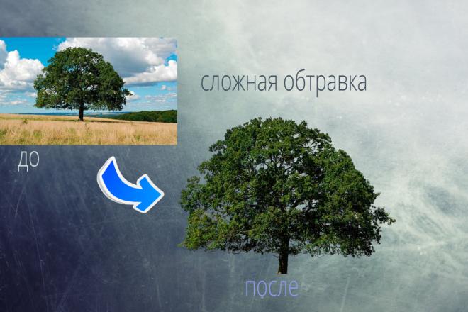 Удаление фона, обтравка, отделение фона 7 - kwork.ru
