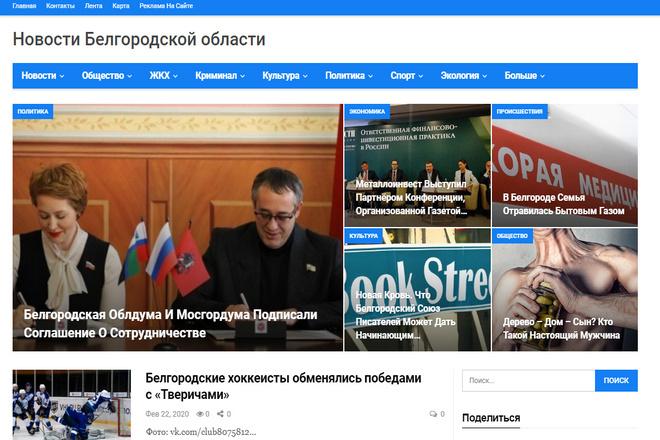 Создам Сми сайт любого региона, автонаполение 6 - kwork.ru