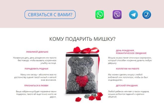 Сделаю копию Landing Page c настройкой 6 - kwork.ru