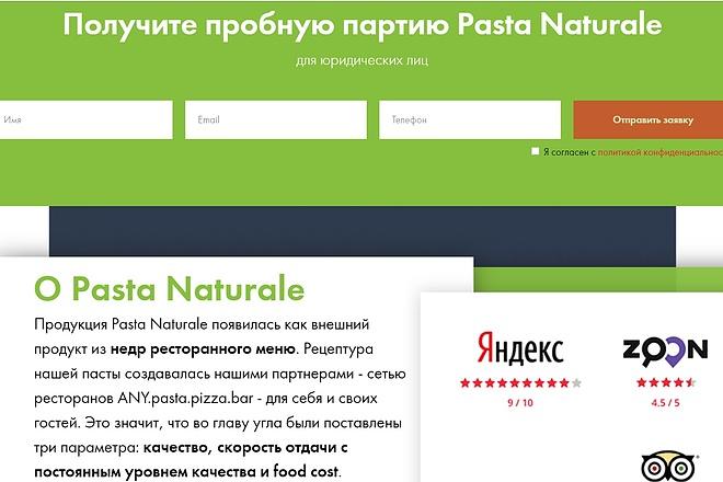 Создание сайта - Landing Page на Тильде 138 - kwork.ru