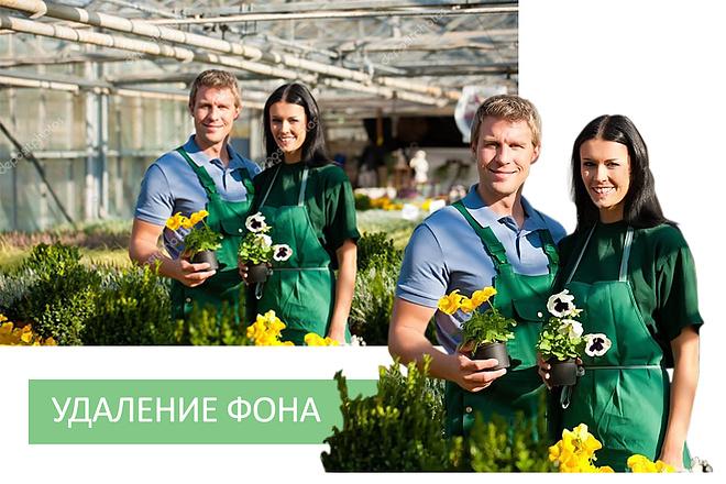 Изменение фона на фото 11 - kwork.ru