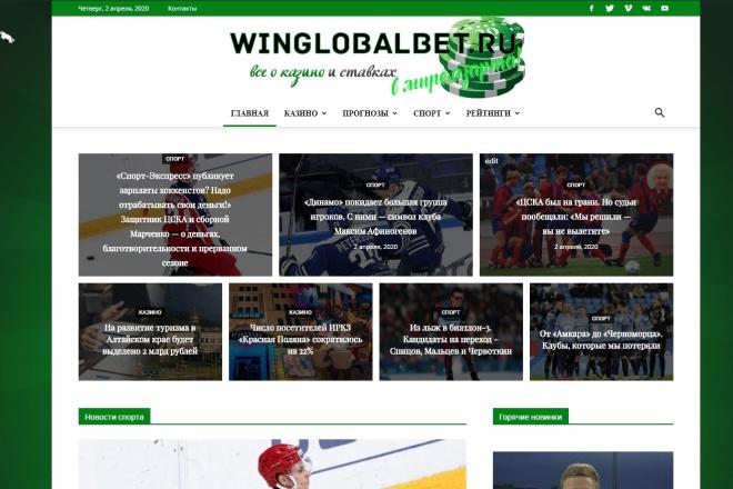 Создам автонаполняемый сайт на WordPress, Pro-шаблон в подарок 1 - kwork.ru