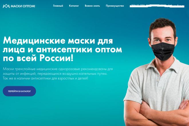 Скопирую страницу любой landing page с установкой панели управления 44 - kwork.ru