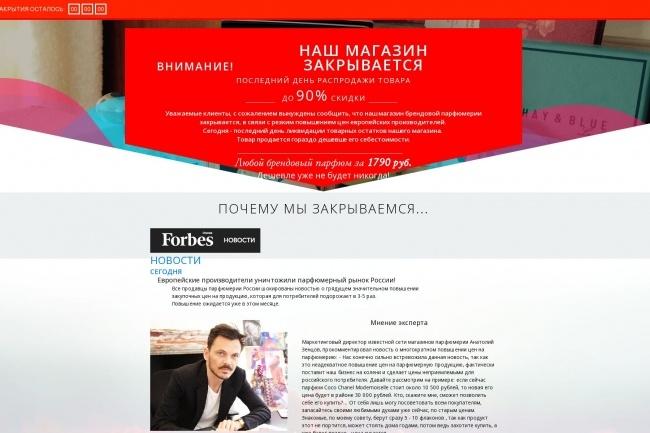 Сделаю копию любого Landing page 13 - kwork.ru
