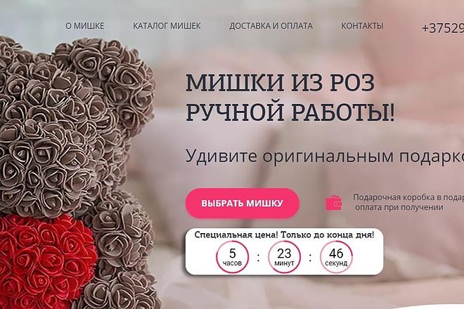 Сделаю копию Landing Page c настройкой 3 - kwork.ru