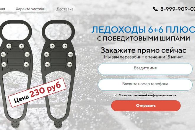Качественная копия лендинга с установкой панели редактора 83 - kwork.ru