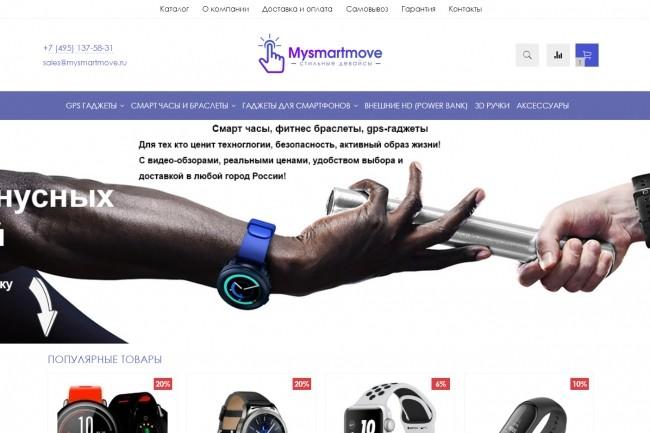 Профессионально создам интернет-магазин на insales + 20 дней бесплатно 47 - kwork.ru